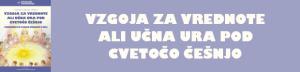 do_vzgoja_za_vrednote